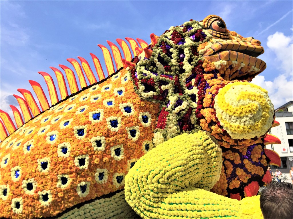 Blumenkorso Ebbs, Leguan