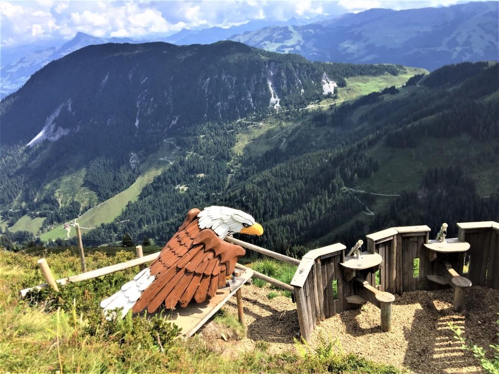 Alpinolino Wilder Kaiser, Murmeltiere